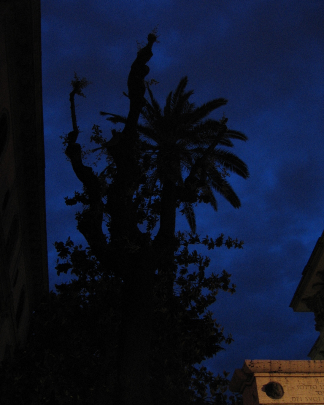 Rome night sky with architecture and tree at 20:15 on the 15th May 2009. Photography by tony0.